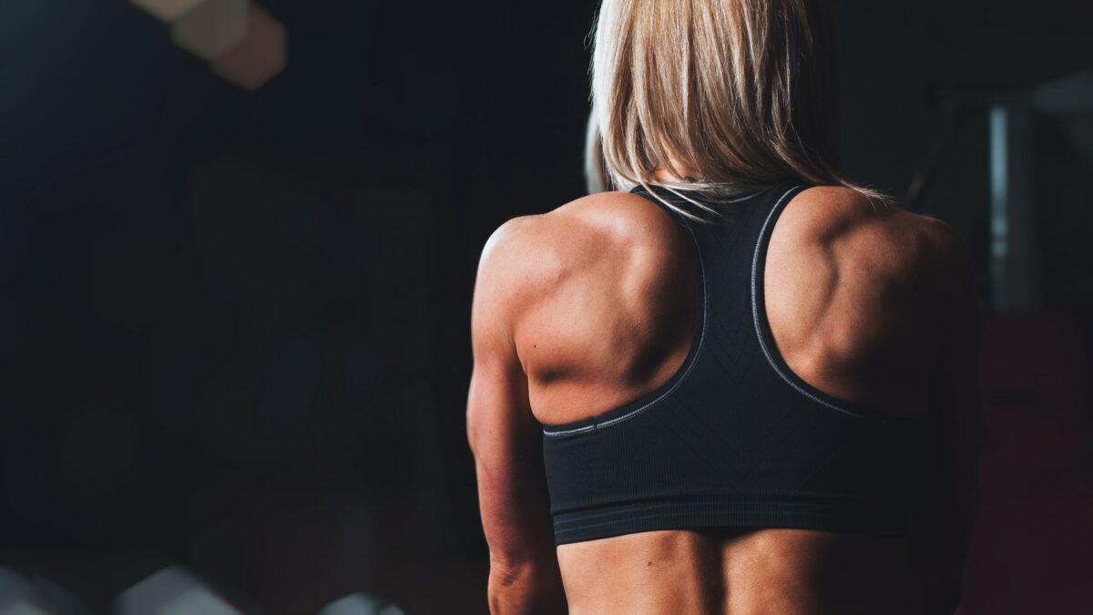 Quel sport pour se muscler ?