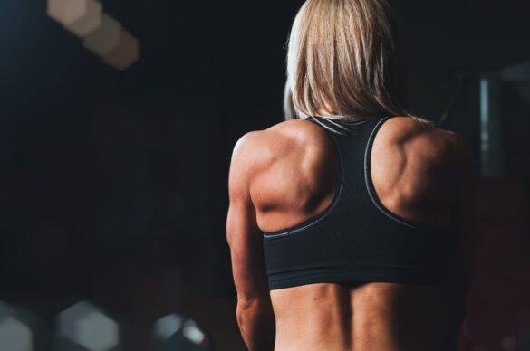 sport pour se muscler